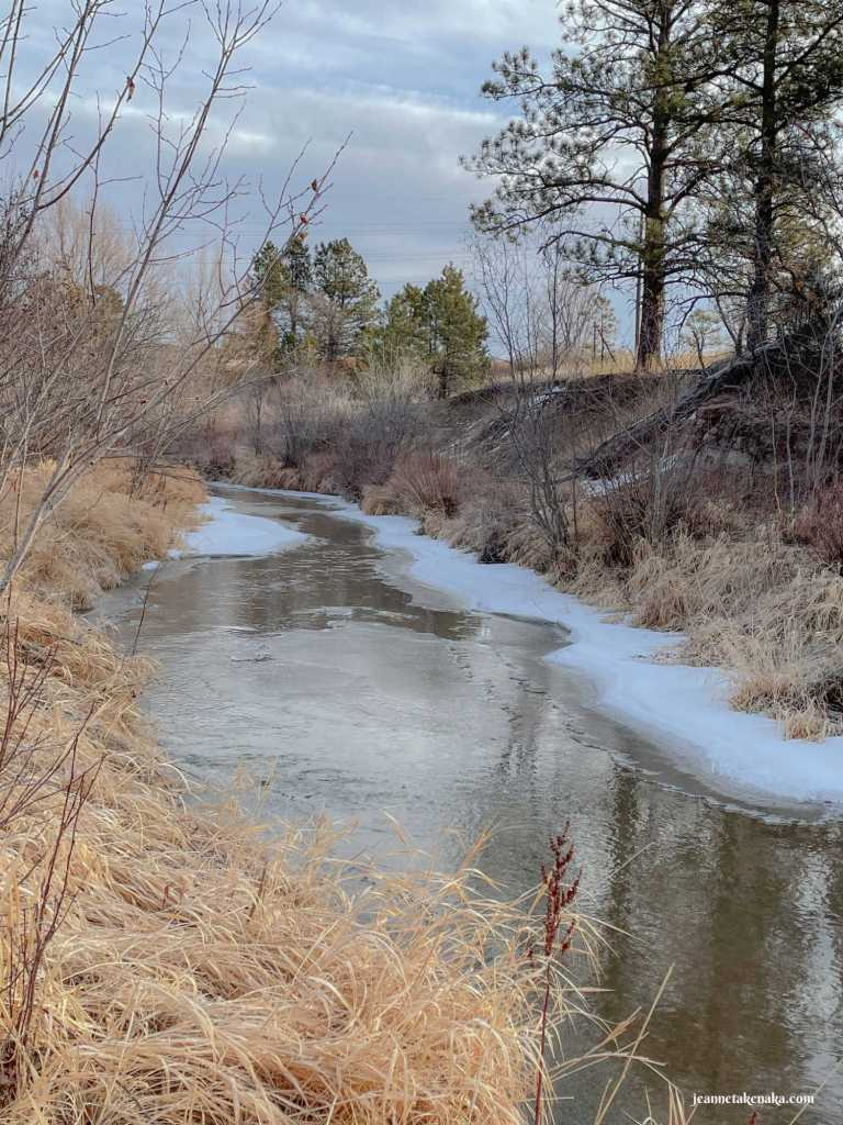 A creek with ice and water running between woodsy banks