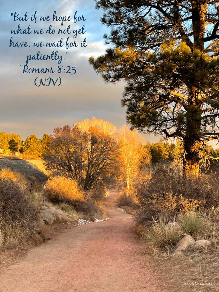 "Meme with the words, ""But if we hope for what we do not yet have, we wait for it patiently."" Romans 8:25 (NIV) on a backdrop of a tree-lined path lit by morning sun"
