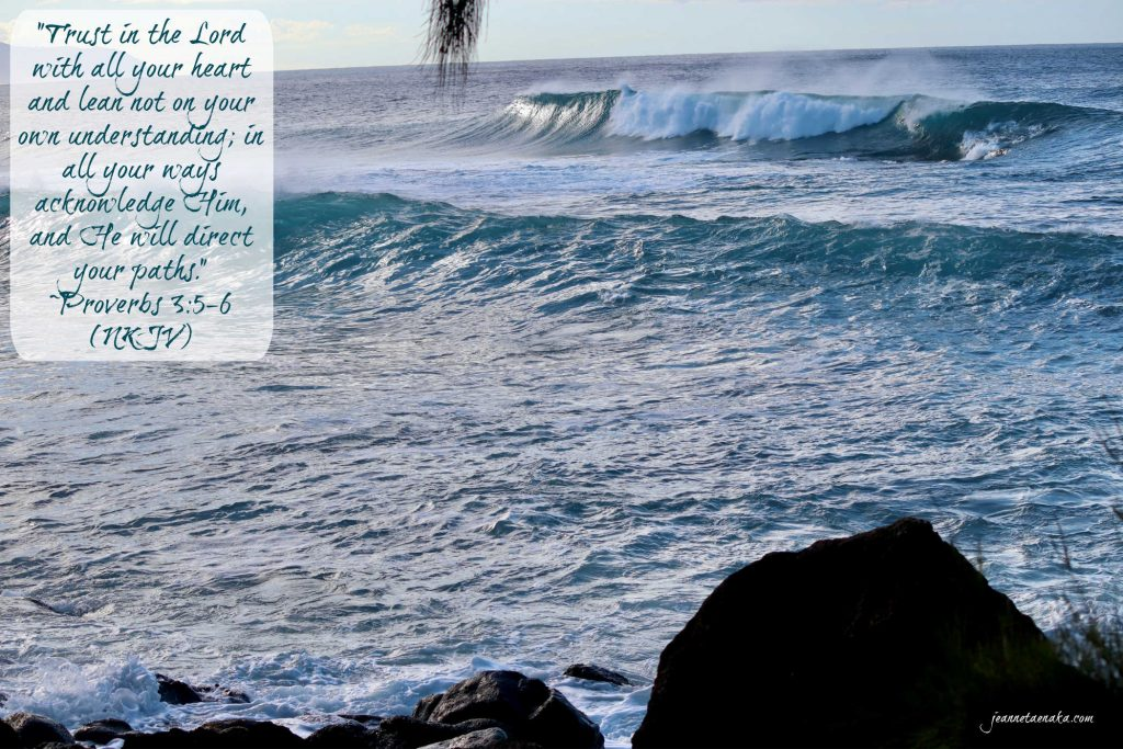 """Meme with the words: """"Trust in the Lord with all your heart and lean not on your own understanding; in all your ways acknowledge Him, and He will direct your paths."""" Proverbs 3:5-6 on a backdrop of large ocean waves rolling toward the shore."""