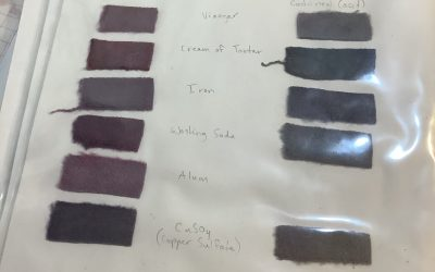 Natural Dyeing – Mordant Types