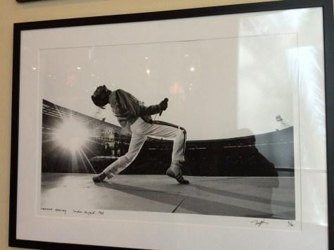 Une superbe photo de Freddy Mercury.