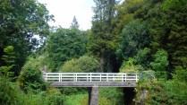 Glenbower Woods, Bridge in woods, Kileagh Cork