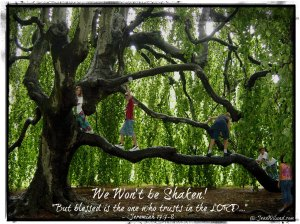 """We Won't Be Shaken!   """"Like a tree planted by the water . . . """" ~ Jeremiah 17:7-8"""
