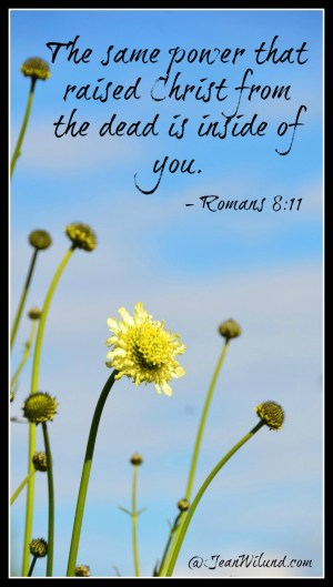 Praise Picture: The same power that raised Christ from the dead is inside of you. - Romans 8:11 via www.jeanwilund.com