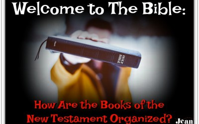 How the Books of the New Testament Are Organized