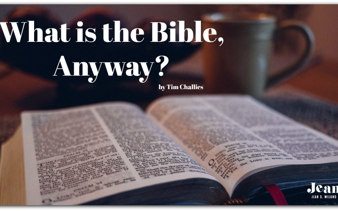 What is the Bible, Anyway? (by Tim Challies)