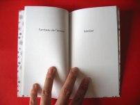 Le petit livre de la fornication © Marie-Amélie Porcher