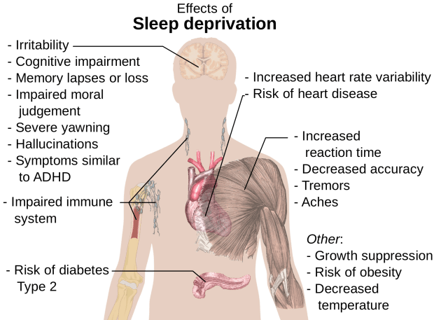 Sleep deprivation side effects -- Wikimedia