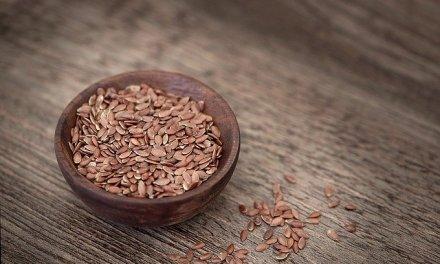 Comment constituer une grainothèque ?