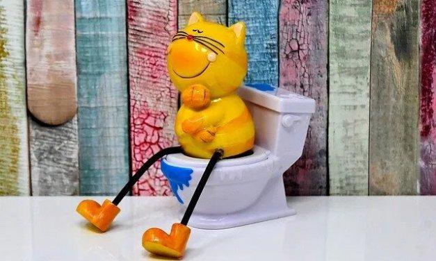 Comment utiliser les eaux usées dans la chasse d'eau des WC ?