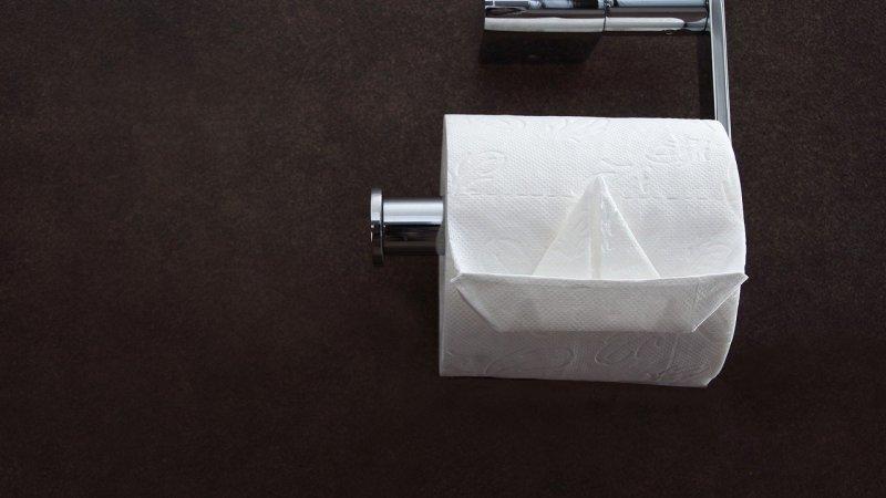 Comment bien choisir son porte papier toilette ?