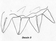 scann tarte étoile Dessin 3