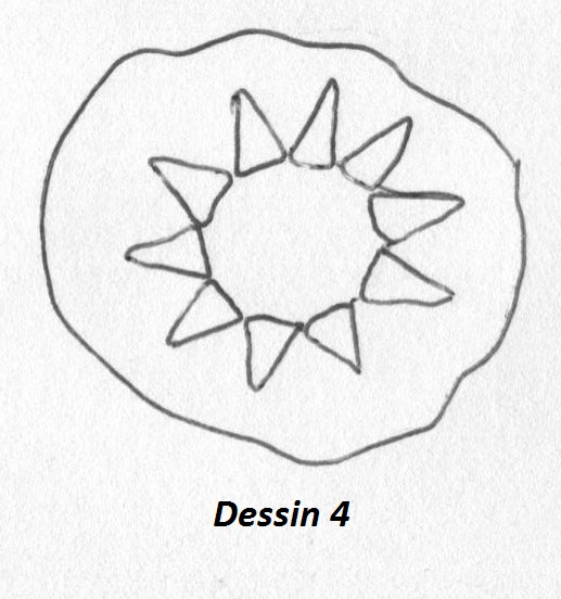 scann tarte étoileDessin 4