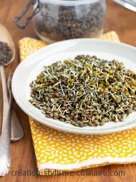 lentilles germées-legumes secs