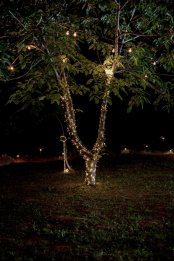 Jedanfrajeribidermajer_tree_fairy_lights