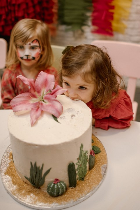 Jedan_frajer_i_bidermajer_organizacija_i_dekoracija_dečjih_rodjendana_torta_9