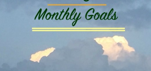 MAy Monthly goals by Aysh on Words n Needles blog