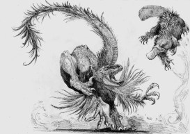 raptor vs platypus modifié - Copie222