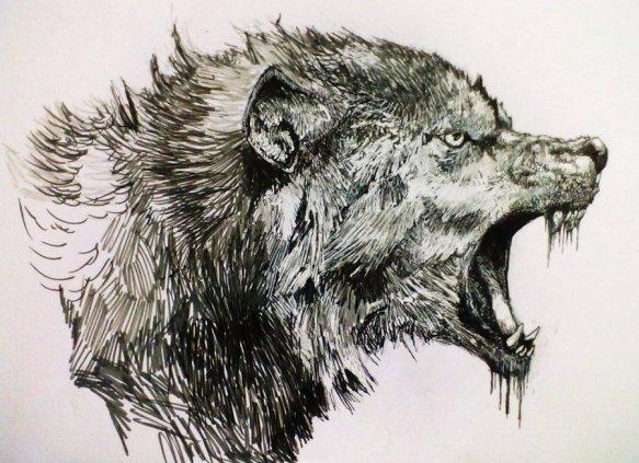 wolf_by_zombiraptor-d45yf3l