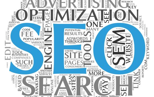 Search Engine Optimization (S.E.O.)