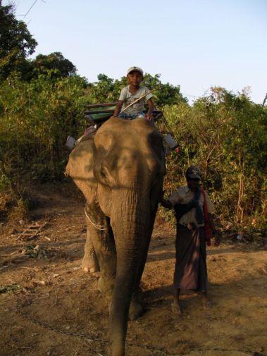 Szczyl na słoniu