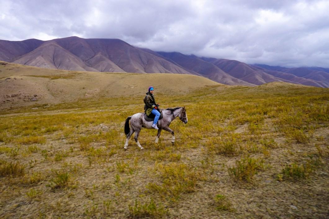 Kirgistan - konno