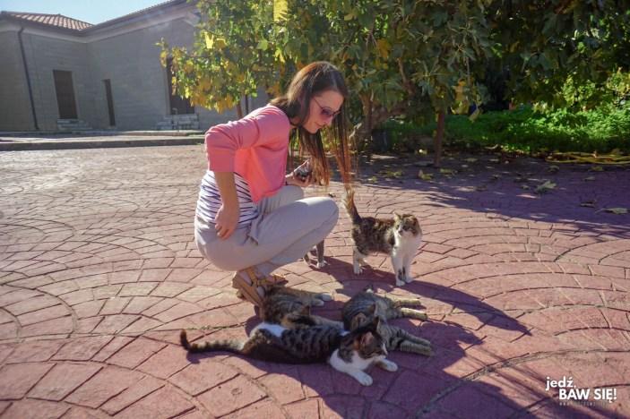 Cypr - klasztor św. Mikołaja od kotów (3)