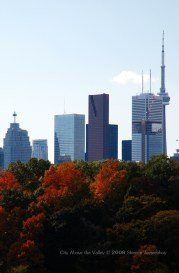 CN Tower from across the Don Valley