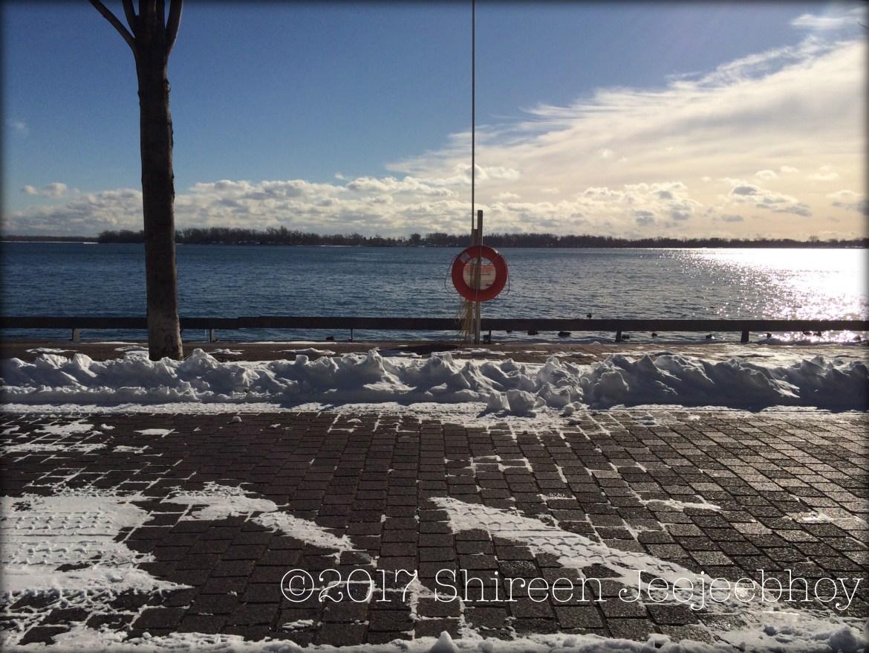 Winter sunlight on the water