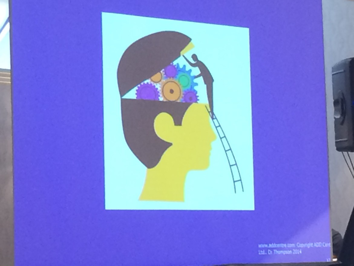 Slide of graphic of man looking into his head. From Healing the Brain conference.