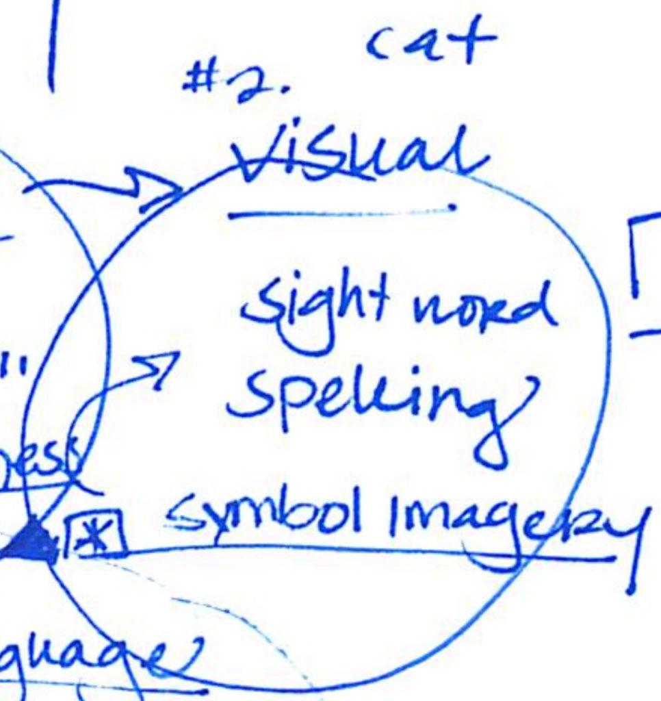 Visual processing illustration