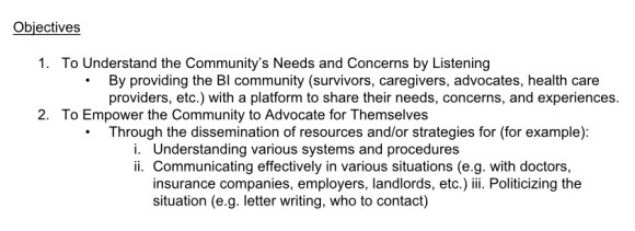 BIST Advocacy Committee Mandate objectives