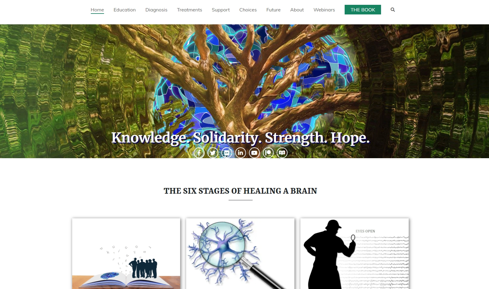 Screen Shot of Part of the Brain Injury site under development by Shireen Jeejeebhoy
