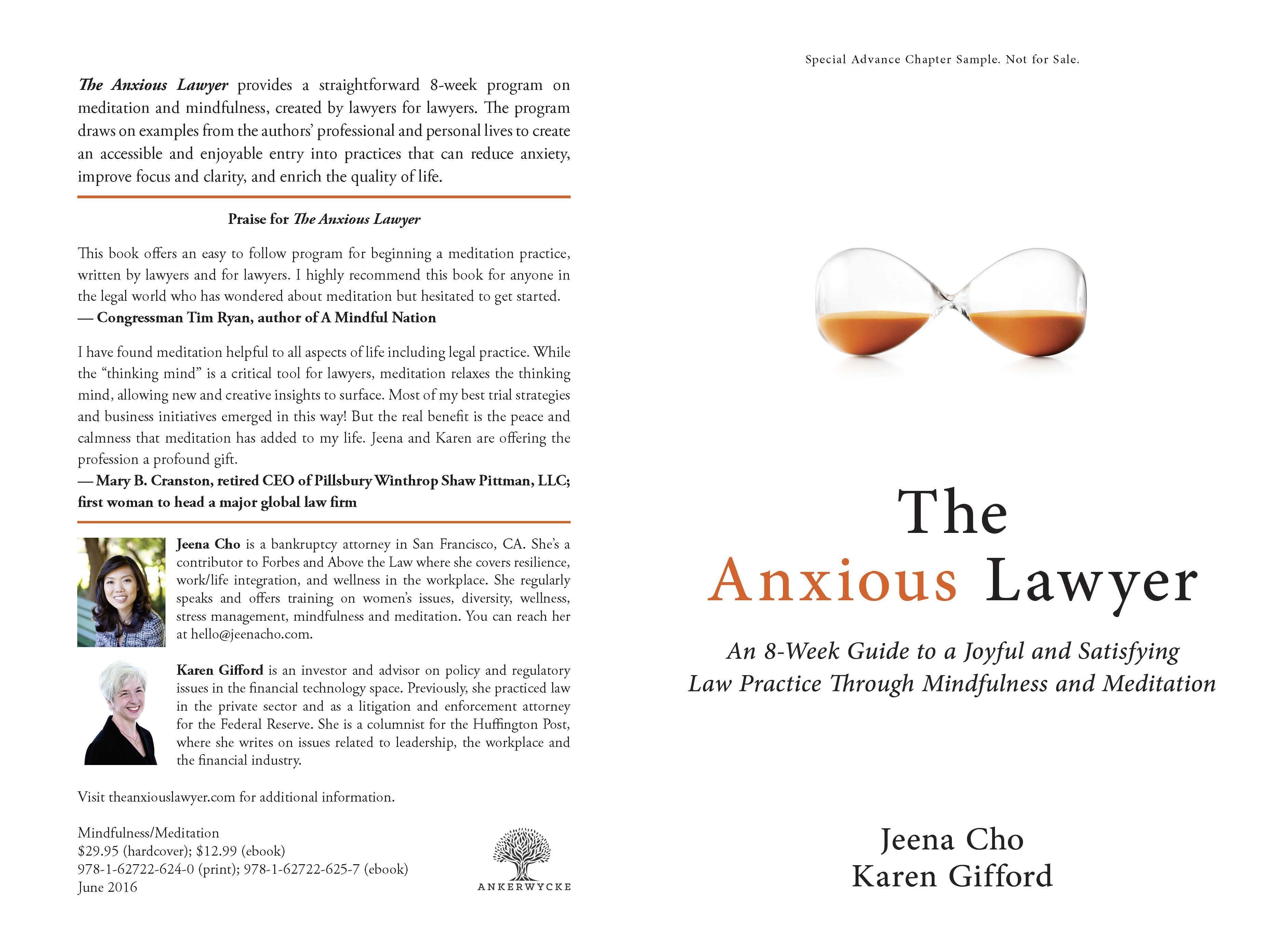 The anxious lawyer cover dust jacket 2 print jeena cho the anxious lawyer cover dust jacket 2 print fandeluxe Gallery