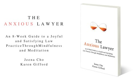 The Anxious Lawyer book
