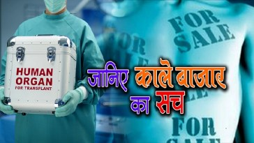 Rate List Of Human Organs In Illegal Market