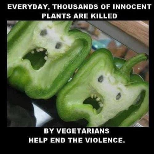 Joga i wegetarianizm są nierozłączne?