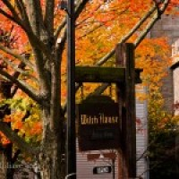 Salem, Halloween and fall foliage