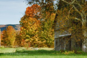 Fall foliage colors surround an old barn in Danby Vermont