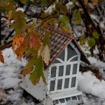 Snow falls in October throughout New England providing fall color opportunities