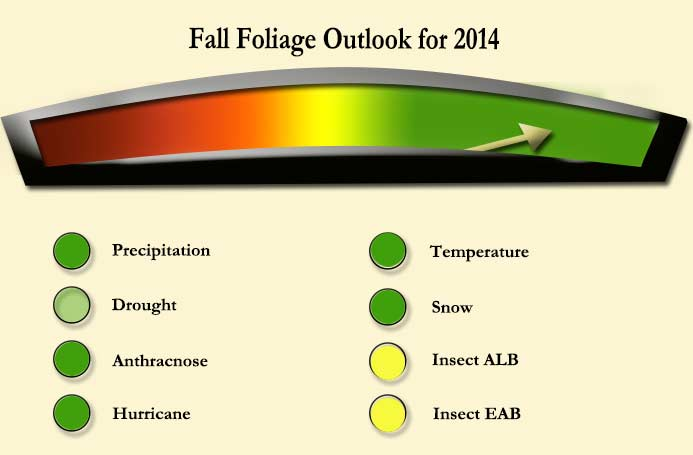 It early to say how the 2014 fall foliage season in New England will be but so far it's looking good.