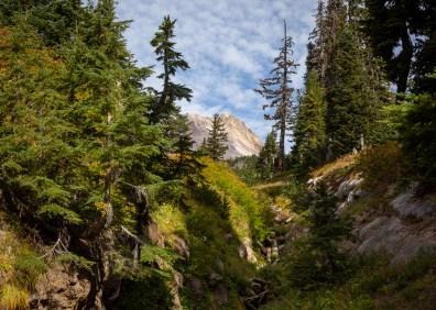2018-09-05-Mt-Hood-Oregon-297