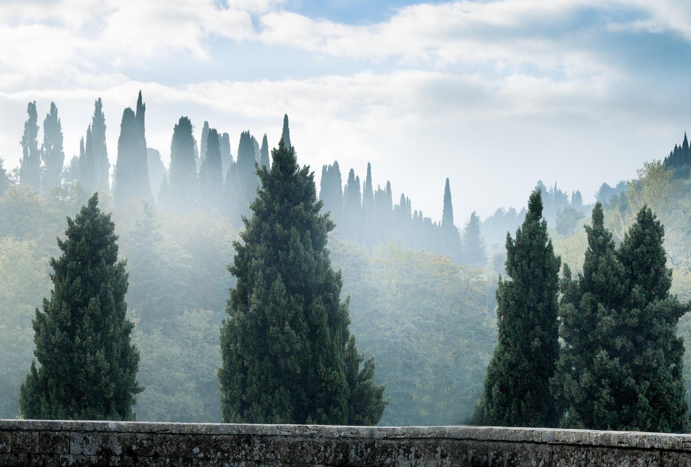 Montepulciano, Toscana, 2014
