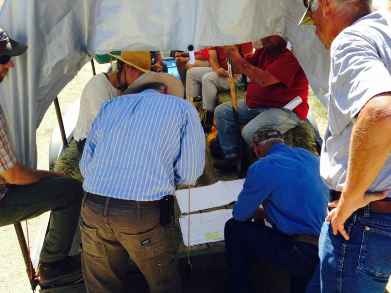 holistic management, red bluff, grazing planning