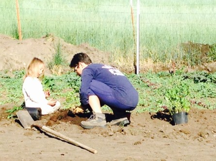 gardening, Surprise Valley, Jefferson Center for Holistic Management