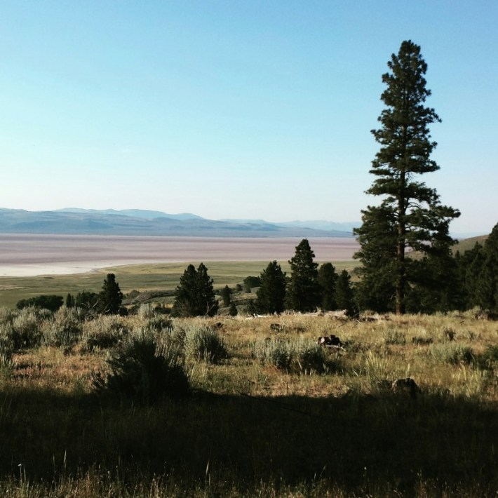 Springs Ranch, trail running, Surprise Valley, Jefferson Center for Holistic Management
