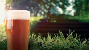 JMCA Members & Friends Beer Tasting Social @ Neighbor's Backyard   Alexandria   Virginia   United States