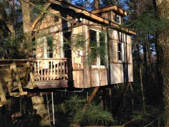 Old Pine Treehouse