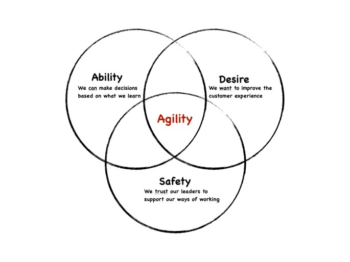agility lies at the intersection of ability, desire and safety