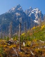 Grand Teton 20140925-005